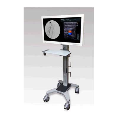 Image Diagnostics ILEX32 Stand Monitor